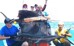 Malaysia-Sailfish-Action-Fishing