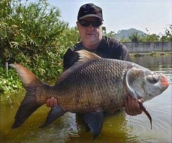 Catla Carp / Kaho India catch by Thailand-Fishing.
