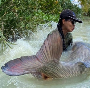 Catch YOUR dream Carp with Thailand-Fishing.