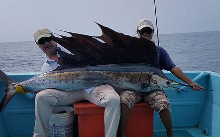 Catch BIG Sailfish with Thailand-Fishing.
