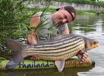 Juliens Golden Price Carp / Pla Yissok Thai / Probarbus Jullieni / catch by Thailand-Fishing.
