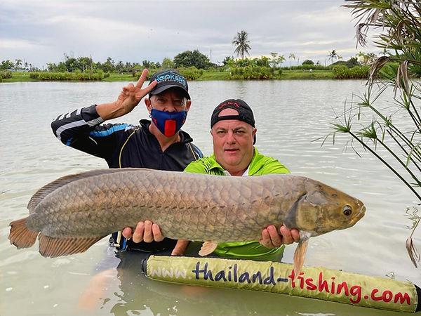 AFRICAN AROWANA OR NILE AROWANA / PLA DAPAT AFRICA / HETEROTIS NILOTICUS catch by Thailand - Fishing