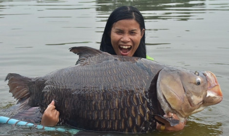 nice thailand carp.