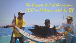 Big Sailfish by thailand-fishing.