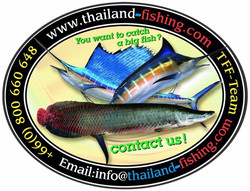 Malaysia Sailfish Action Fishing.