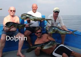Dorados catch at Ocean Fishing Pattaya.