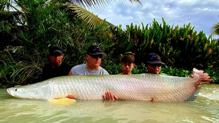 One of a thousand Arapaima gigas catch by Thailand-Fishing.