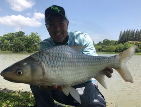 Solder River Barb / Pla Takok / Cyclocheilichthys Enoplos / catch by Thailand-Fishing.