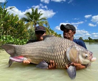 Thailand-Fishing with Carp.