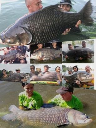 Catch the biggest Giant Siam Carps in Thailand.