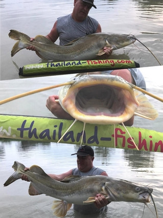 A rare SALWEEN CATFISH catch with thailand-fishing.