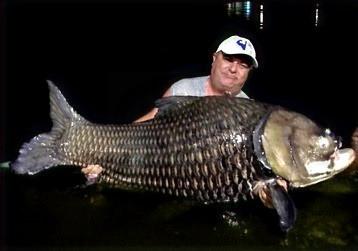 Big Siam Carp by night catch by Thailand-Fishing.