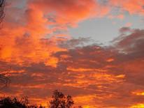 fire-in-the-sky-paula-daniels.jpg