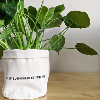 canvas planter