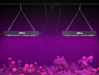What Are the Advantages of Using LED Grow Lights?