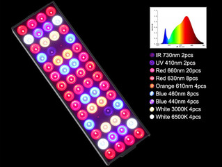 What Are Full Spectrum LED Grow Lights