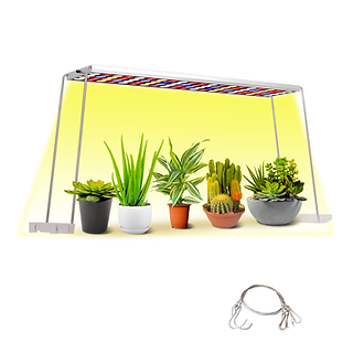 desk lamp grow light.png