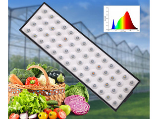 What is a Plant Grow Light?