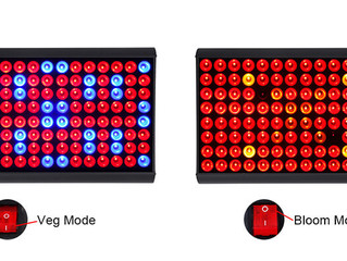 JCBritw Releases its 300W Two Modes Full Spectrum LED Grow Light on October 27