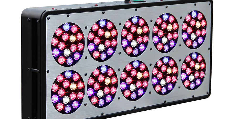 JCBritw Apollo 10 LED Grow Light Full Spectrum for  Vegetables Growing