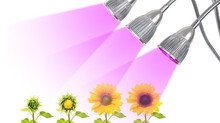 Check the Illumination Area to Find a Right LED Grow Light