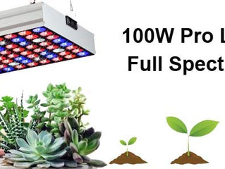 JCBritw Releases The 100W Pro Full Spectrum LED Grow Light on August 10