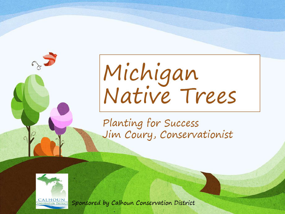 Michigan-Native-Trees-PP-1.jpg