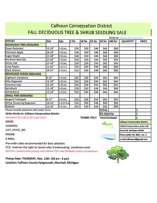 Fall 2020 Deciduous Tree Form.JPG