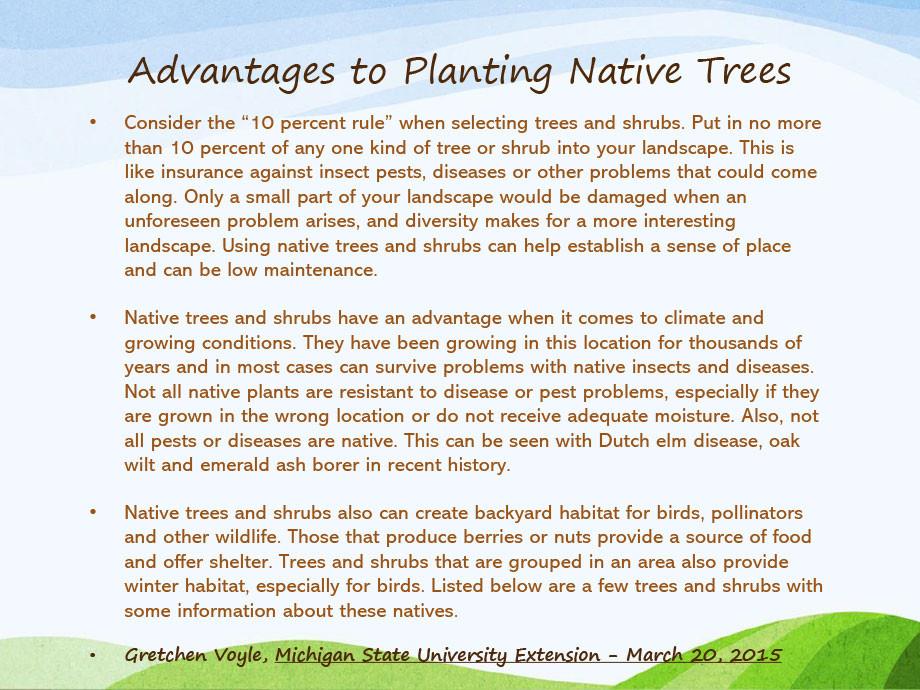 Michigan-Native-Trees-PP-4.jpg