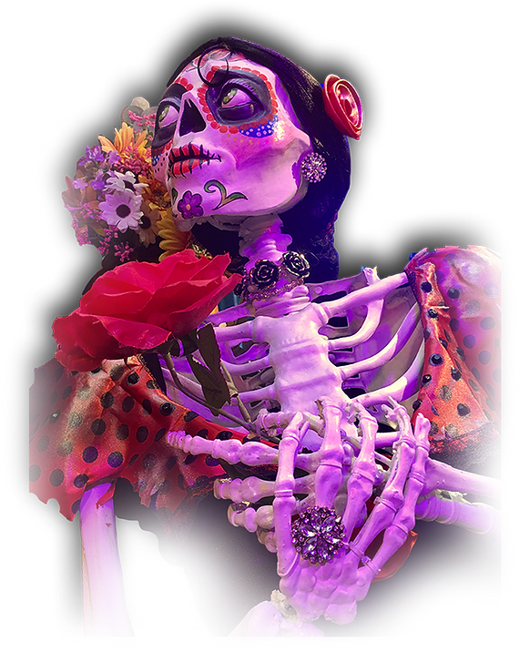 Skeleta.png