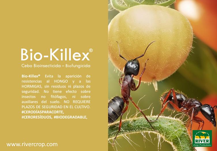 KILLEX SOST.png