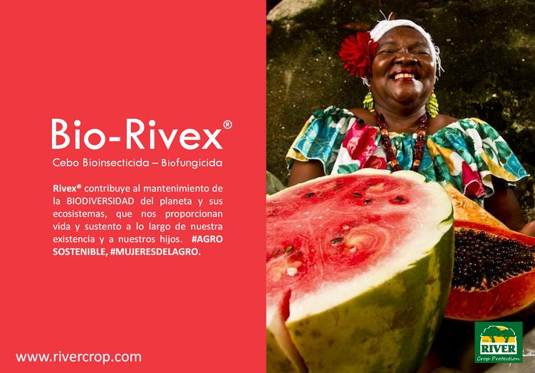 RIVEX SOSTENIBLE 3.png