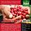 Thumbnail: BIO-COMBO CAFÉ Llenado y Protección Cafetales