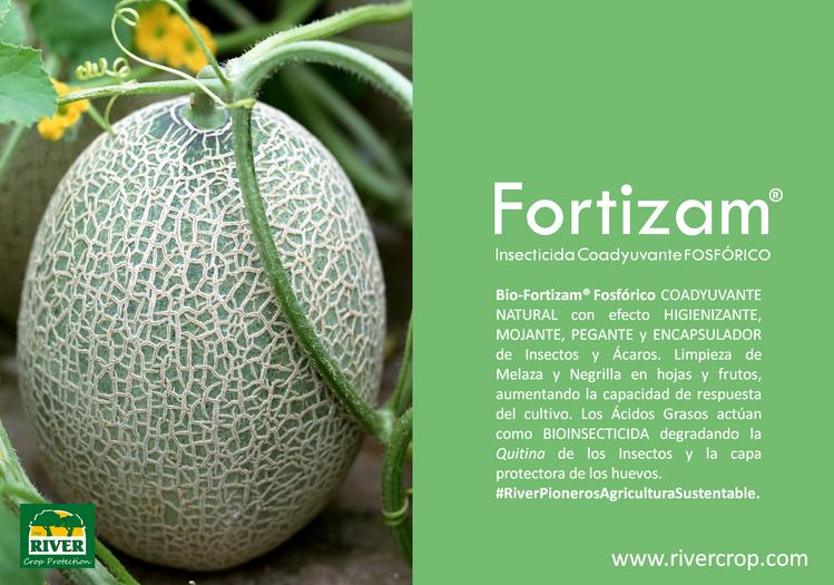 FORTIZAM FOSF. PRESENT.png