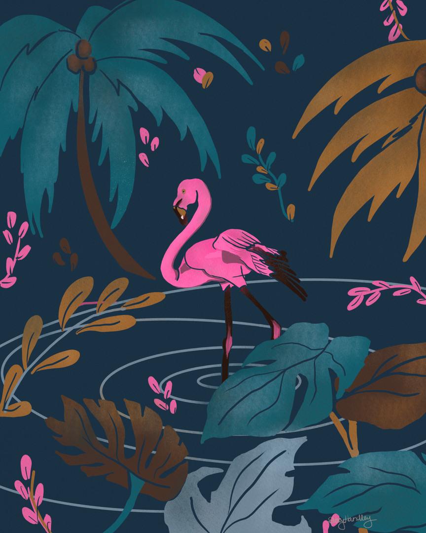 Flamingo_3.jpg