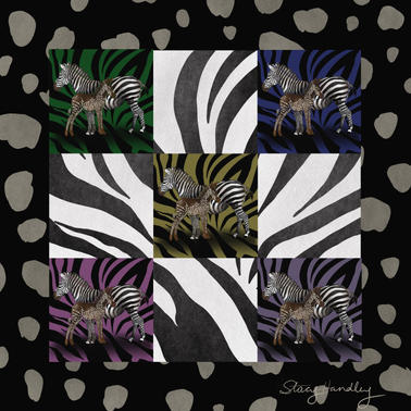 Zebra_Set-_Spotted_Frame_Striped_Backgro