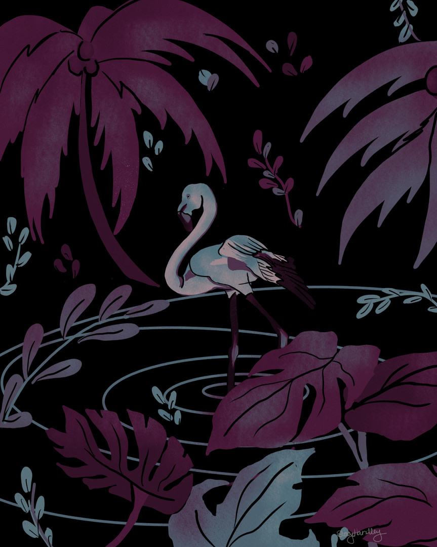 Flamingo_2.jpg
