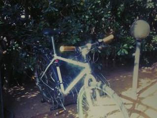 Incentivi per chi si sposta in bici: a Milano in arrivo un nuovo progetto green