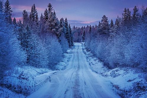 Vägen till byn