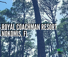 Royal-Coachman-Resort.png