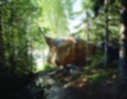fotocr10.jpg