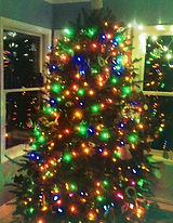 Christmas Tree from Lazy Susan Tree Farm