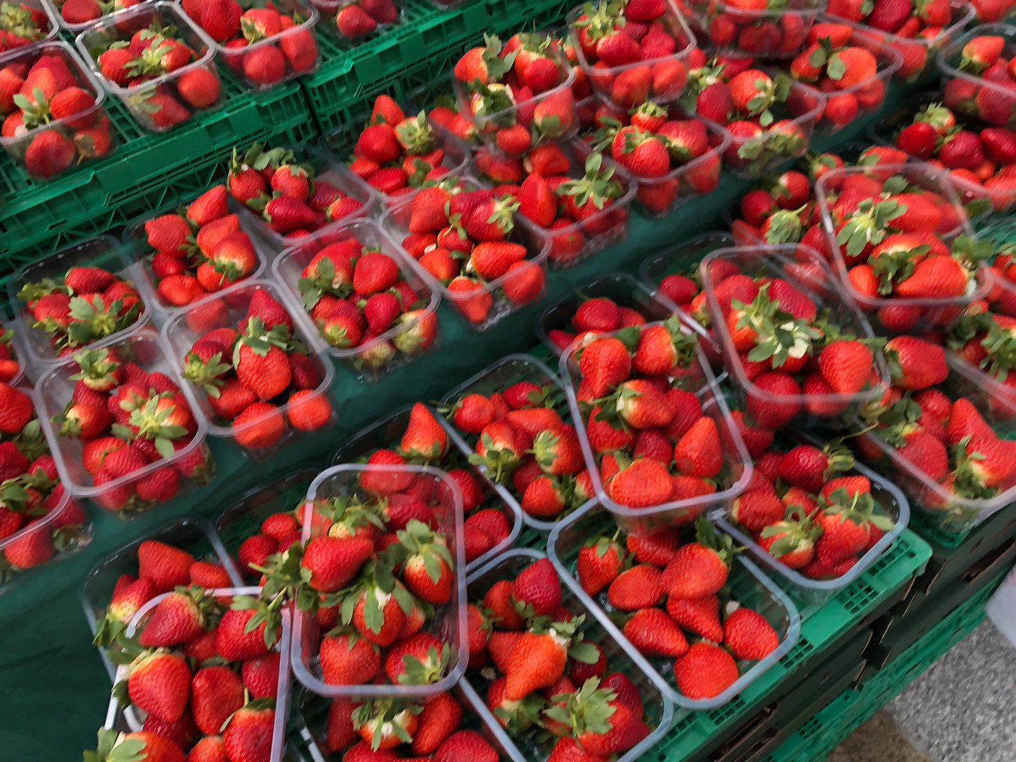 Strawberries on Market day