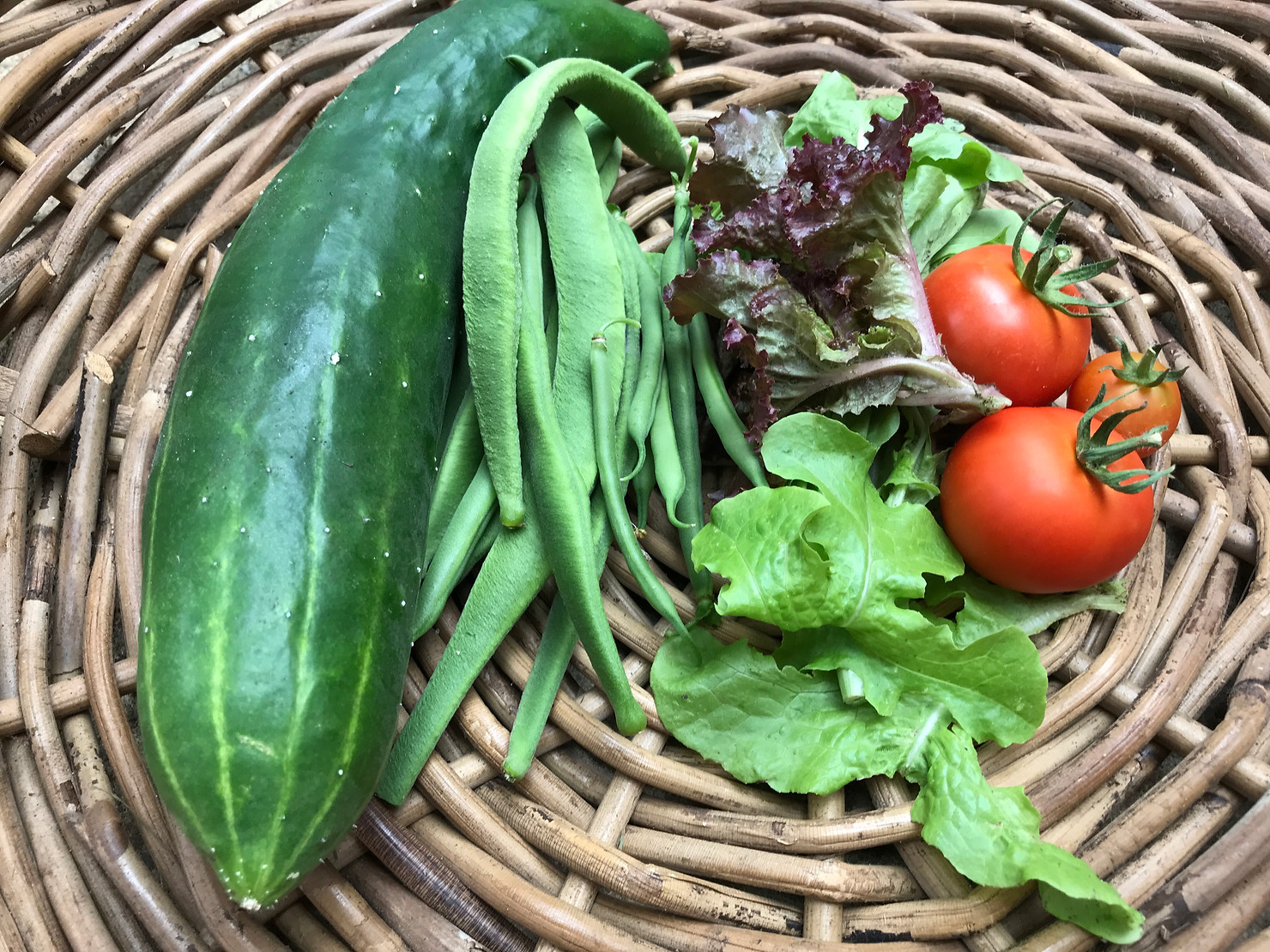 Food grown on our vegetable patch