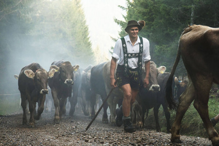 Johannes beim Viehscheid der Nachbaralpe