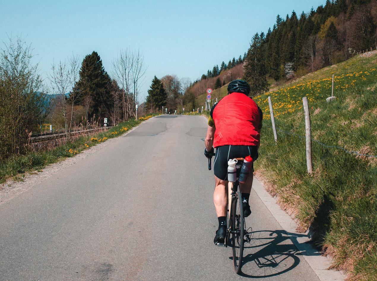 Ruhiger Radweg am Alpsee