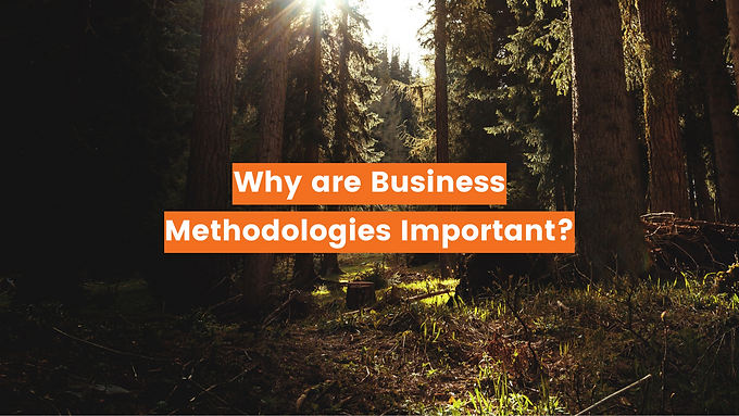 Why are Business Methodologies Important?