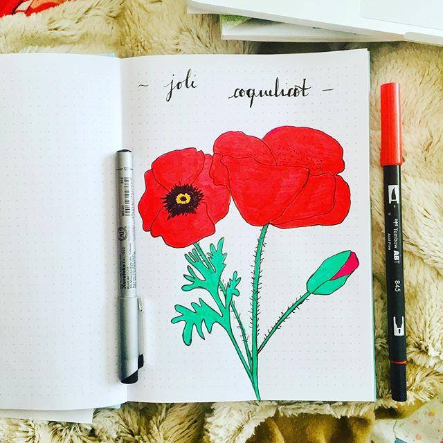 [Bullet journal] Mon mois de juin est en
