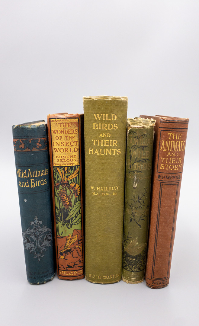 5 Antique Books on Wildlife