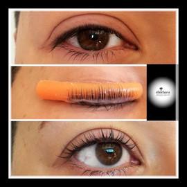 Eyelash Lift/Tint